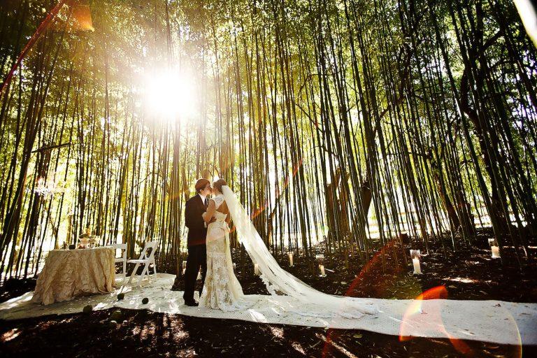 Cateva motive pentru a alege o formatie la nunta