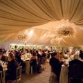 formatie nunta, formatii nunta, formatie nunta bucuresti, formatii nunta bucuresti, formatie nunti, formatii nunti, formatie nunti bucuresti, formatii nunti bucuresti, trupa nunta 10